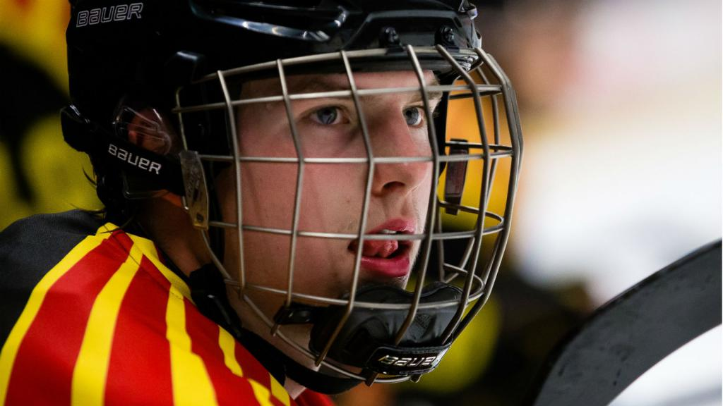 Next in line – Söderström the latest Swedish D-man to rave about