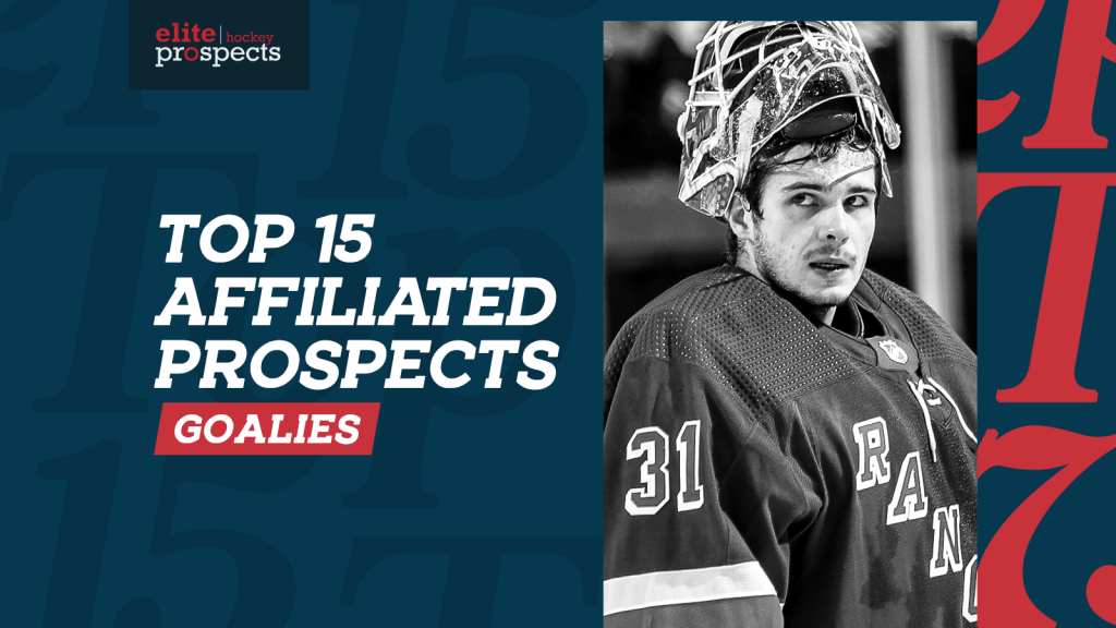Ranking the NHL's 15 Best Goaltending Prospects